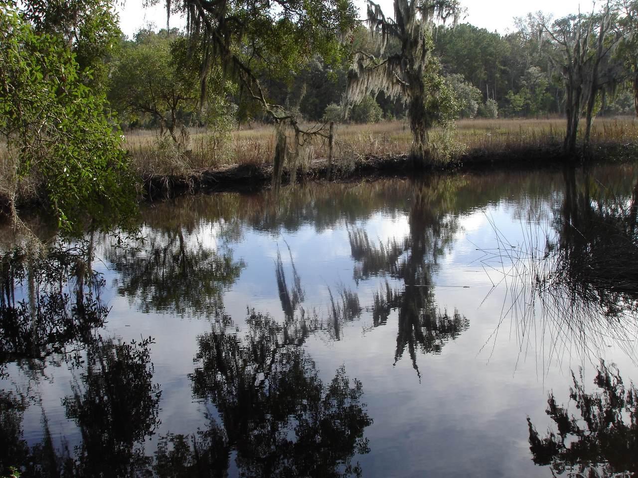 5930 Dungannon Plantation Way - Photo 1