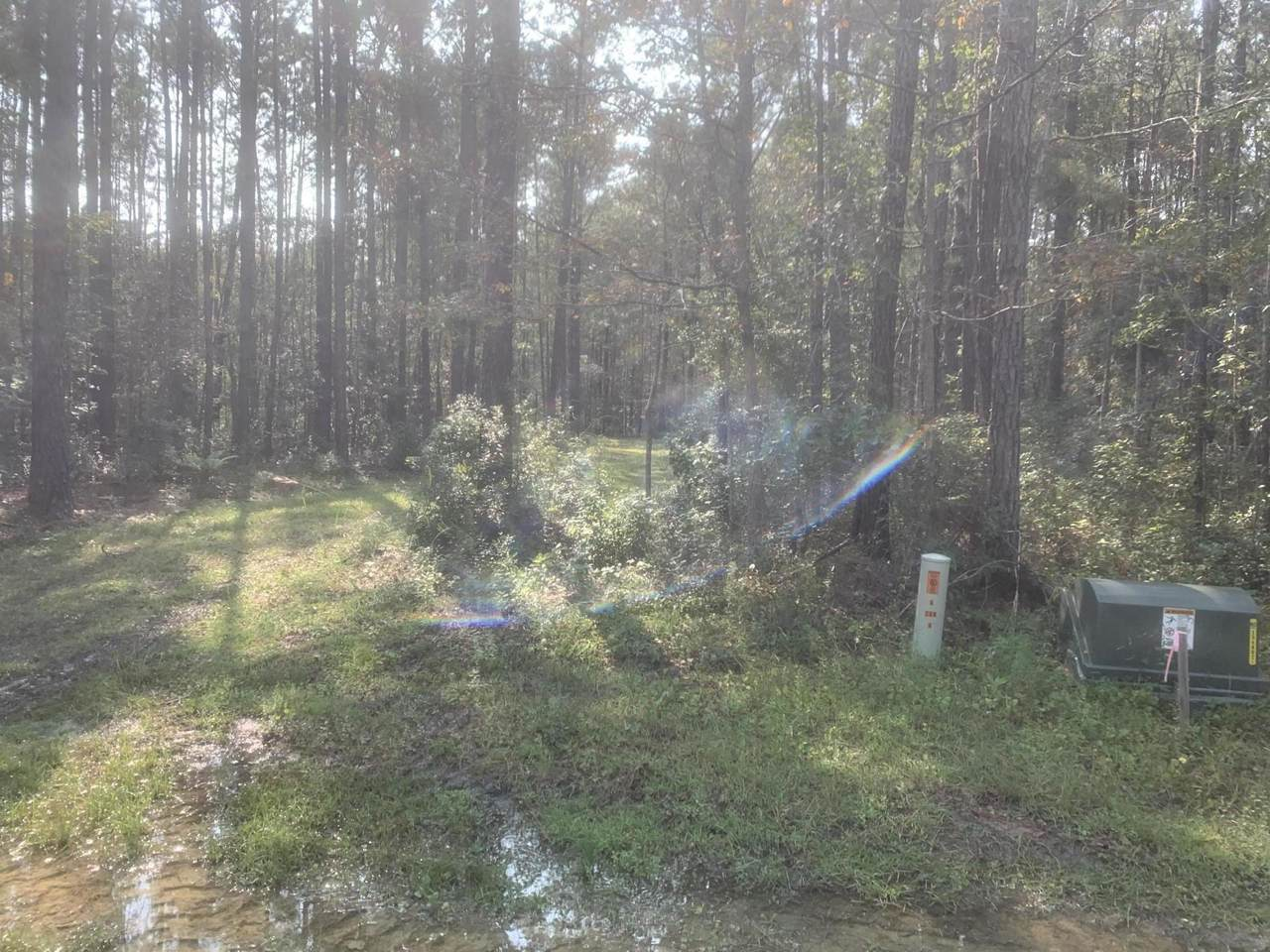 0 Bridle Gate Trail - Photo 1