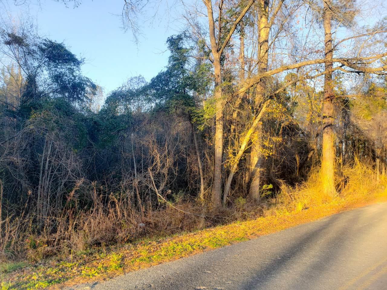 0 Murraysville Road - Photo 1