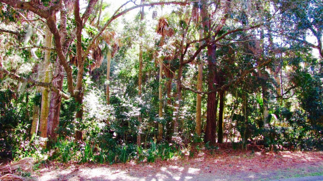 2645 Seabrook Island Road - Photo 1