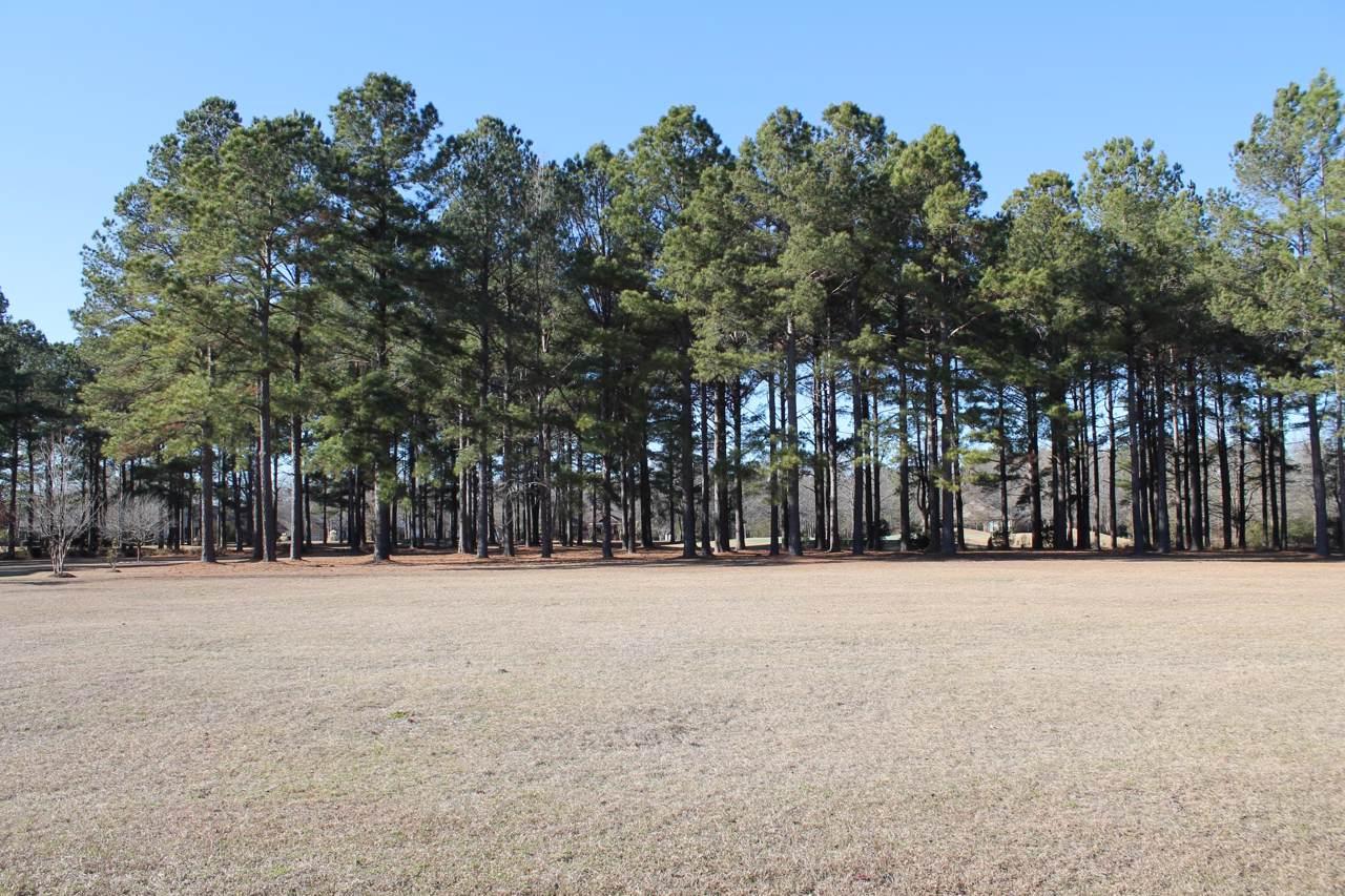 405 Pine Lake Court - Photo 1