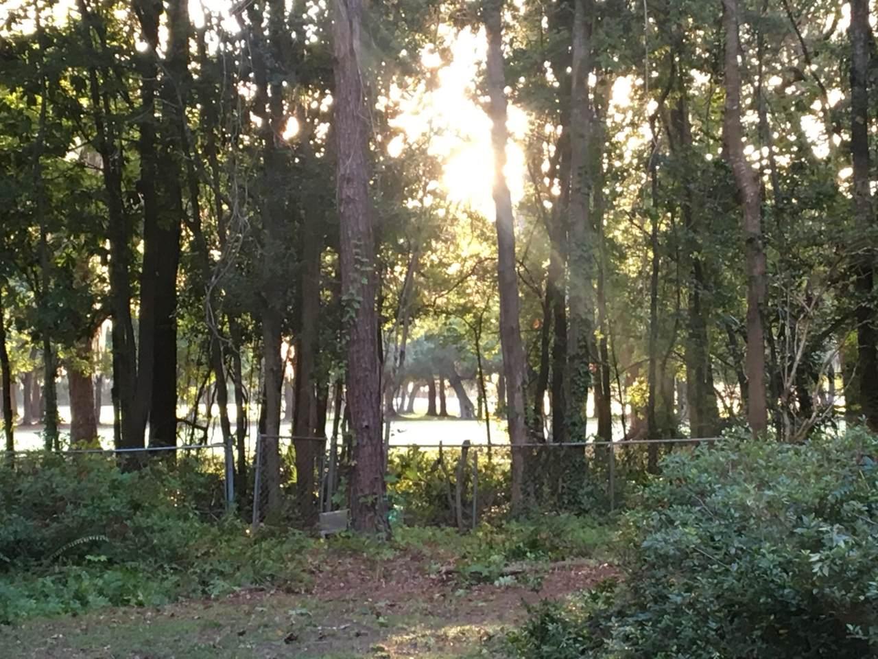 473 Woodland Shores Road - Photo 1