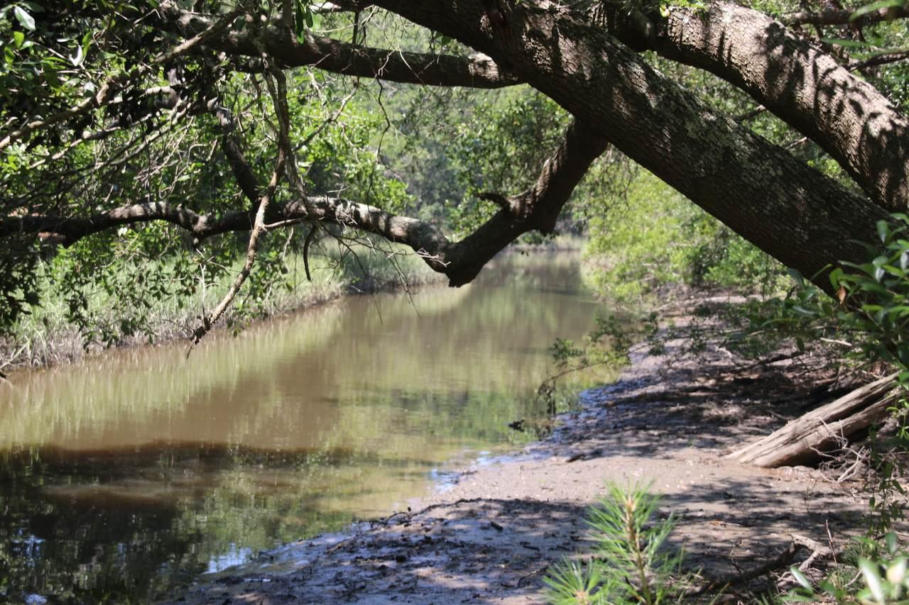 2794 Burden Creek Road - Photo 1