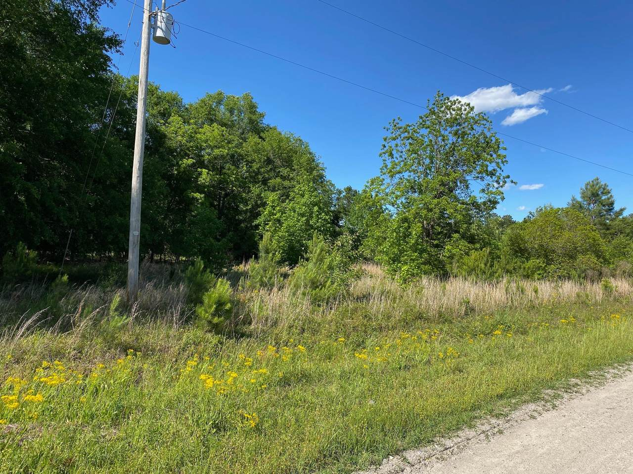 184 Mott Road - Photo 1