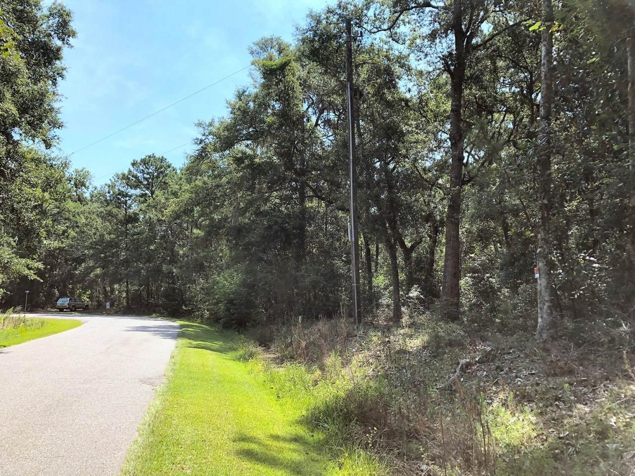 8167 Chisolm Plantation Road - Photo 1