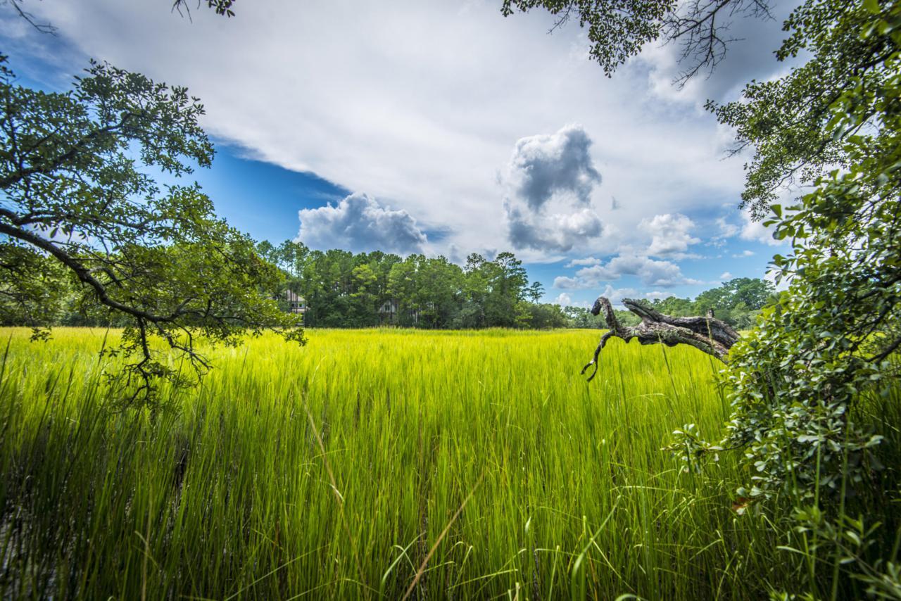 934 Tupelo Bay Drive - Photo 1