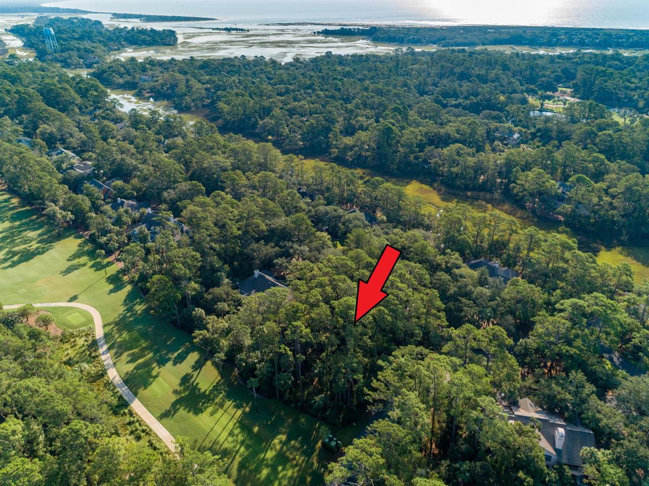 2510 Cat Tail Pond Road - Photo 1