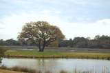 4358 Hope Plantation Drive - Photo 5