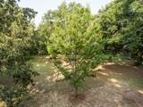 1584 Periwinkle Drive - Photo 4