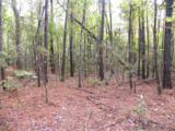 0 Sand Dollar Lane - Photo 2