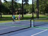 429 Pinelake Court - Photo 8