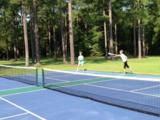 429 Pinelake Court - Photo 9
