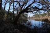 8610 Raccoon Island Road - Photo 10