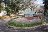 6240 April Pine Circle - Photo 15