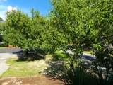 902 Shelter Cove - Photo 49