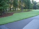 6247 Pepper Grass Trail - Photo 4