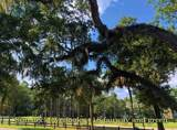 602 Magnolia Walk Villas - Photo 10