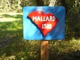 1508 Creekwood Road - Photo 35
