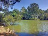 1318 Center Lake Drive - Photo 6