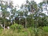 609 Jungle Road - Photo 5