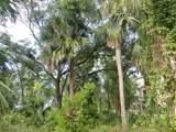 609 Jungle Road - Photo 7