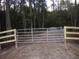 8754 Savannah Hwy. - Photo 1