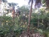 705 Jungle Rd - Photo 4