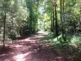 Lot 1 Summit Plantation Road - Photo 14