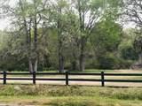1352 Porchers Bluff Road - Photo 1