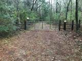 8243 Chisolm Plantation Rd Road - Photo 1