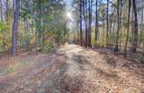 0 Savannah Highway - Photo 3