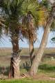 1544 Oak Island Drive - Photo 16