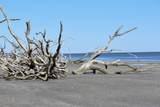 7760 Botany Bay Road - Photo 2