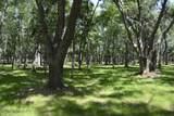 8976 Palmetto Road - Photo 2