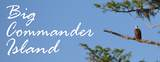1 Commander Island - Photo 41