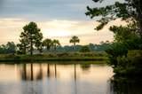 750 Glossy Ibis Lane - Photo 4