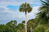 750 Glossy Ibis Lane - Photo 9