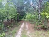 0 Woodhaven Road - Photo 3