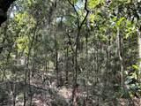 8167 Chisolm Plantation Road - Photo 6