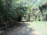 Lot C Walking Horse Road - Photo 18