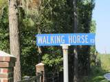 Lot C Walking Horse Road - Photo 21
