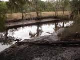 5930 Dungannon Plantation Way - Photo 22
