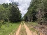 2113 Osprey Watch Lane - Photo 52