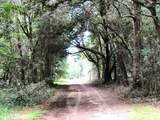 2113 Osprey Watch Lane - Photo 53