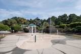 156 Palm Cove Way - Photo 38