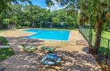 4608 Palm View Circle - Photo 41