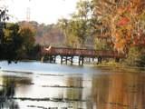 1508 Egret Creek Court - Photo 94