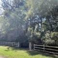 3566 River Road - Photo 1