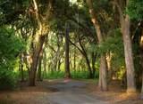 4462 Hope Plantation Drive - Photo 16