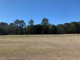 Lot 25 Palmetto Air Plantation - Photo 1